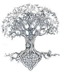 dara celtic knot the meaning of the word dara can be traced