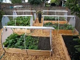 Fall Vegetable Garden Ideas Winter Gardening Ideas Saleros Club