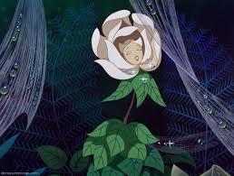the flowers alice in wonderland wiki fandom powered by wikia