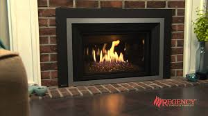 Gas Wood Burning Fireplace Insert by Traditional Gas Fireplaces U0026 Inserts Estates Chimney Sweep Inc