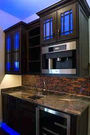 led under cabinet strip lighting interior installing under cabinet led lighting gammaphibetaocu com