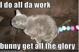 Easter Egg Meme - happy easter trivia i have cat