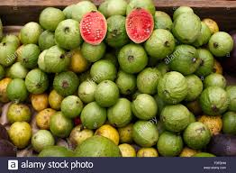 guava an edible pale orange tropical fruit with pink juicy