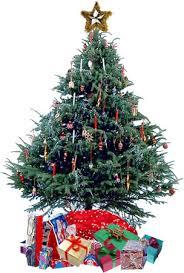 christmas tree pic free christmas tree graphics christmas tree animations clipart