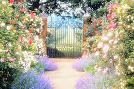 flower garden design perennial flower garden design plans backyard