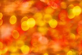 colors close to yellow free photo yellow red macro color close up color image max pixel