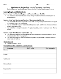 biochemistry worksheet the best and most comprehensive worksheets