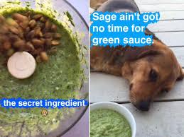 5 minute magic green sauce recipe pinch of yum