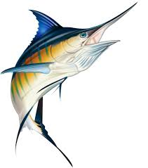 marlin tattoo kuta blue marlin private collection of coastal properties international