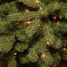 7 5 pre lit plymouth douglas fir tree sears
