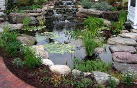 Backyard Ponds Ideas Pond Diy Fish Pond Diy Backyard Pond Ideas Above Ground Pond Small