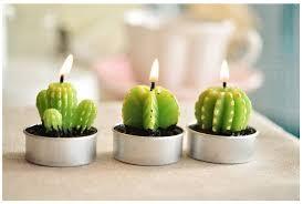 cute plant 2 cái lot cute sinh nhật của bé xương rồng nhỏ thực vật đảng