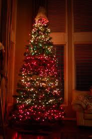 crazy christmas tree lights christmas season greens crab pot trees pre lit christmas fft g5c