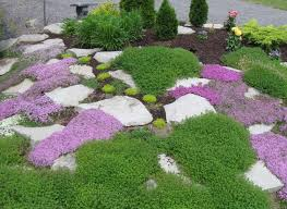 garden landscaping rocks garden plans and layouts garden