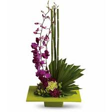 flower delivery rochester ny tropical flowers florist in rochester ny tropical flowers