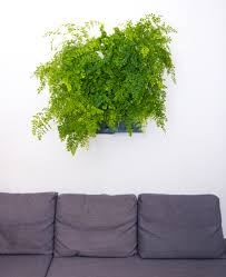 Wall Gardening System by Wall Support For Minigarden Vertical Minigarden Us