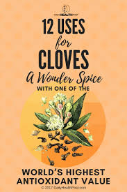 Cloves 12 Uses For Cloves A Spice With Strong Antioxidant Value