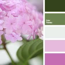 lilac color color of lilac color palette ideas