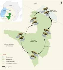 Map Of Uganda In Africa by Tanzania Kenya And Uganda Combined Tour U2013 Afrishare Trekking