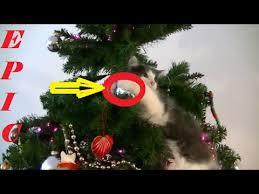 hilarious cat ruining breaking ornaments