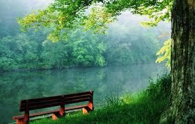 free nature wallpapers hd
