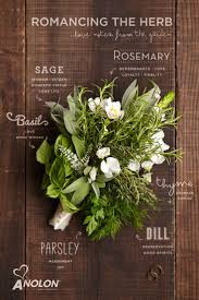 flower arrangement pictures with theme best 25 herb bouquet ideas on pinterest buttonholes diy