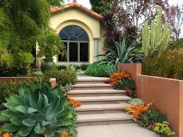 Plants For Front Yard Landscaping - front yard plants houzz
