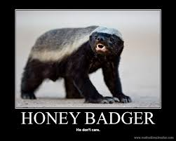 Honeybadger Meme - 190 pounds of horsepower honey badger don t care
