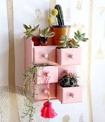 best 25 cactus planters ideas on pinterest cactus cactus