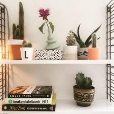 Ark Bookshelf by Bookshelf Cacti Succulents Vintage H O M E Pinterest