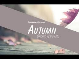 october 2016 color of the month autumn orchid sherwin williams