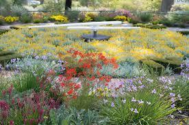 Kings Park Botanic Garden by Spring In Kings Park U2013 Rob Dose Landscape And Portrait