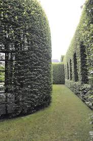 519 best landscaping images on pinterest landscaping landscape