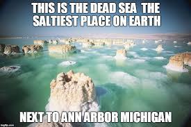 Fish In The Sea Meme - dead sea memes imgflip