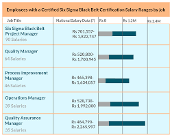 resume helps six sigma resume resume for your job application it also helps the professionals to get promotion please find below the salary package levels