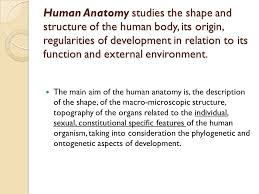 Structure Of Human Anatomy Human Anatomy As A Science Ppt Video Online Download
