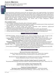 science resume format computer science resume sample student