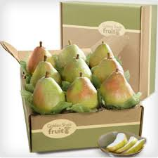 Fruit Gifts Fruit Gift Ideas 25 Of The Juiciest Fruit Gifts Dodo Burd