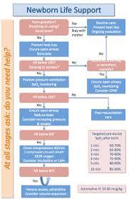 australian resuscitation guidelines 2011