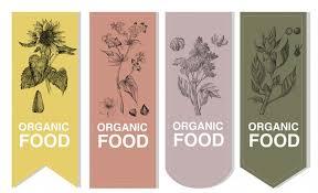 3 key benefits of organic buckwheat mattresses eco health lab