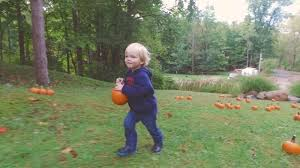 spirit halloween canton ohio halloween weekends at jellystone parks yogi bear u0027s jellystone