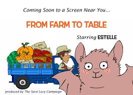 from farm to table bat week bat week bat week the save lucy caign