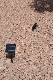 Bright Solar Spot Lights - high output bright solar spot light purelysolar