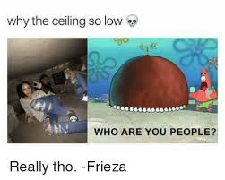 Who Are You People Meme - why the ceiling so low who are you people really tho frieza