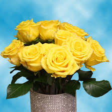 send roses online light yellow roses send roses online cheap roses free delivery