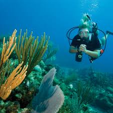 the best black friday deals on snorkeling equipment coral key scuba and travel