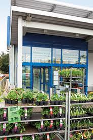 Lidl Garden Chairs Are Plants And Garden Tools Cheaper At Aldi And Lidl U2013 Which News