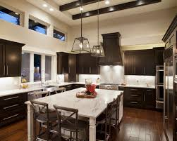 Colors For Kitchen Cabinets by Dark Cabinets Light Granite Houzz