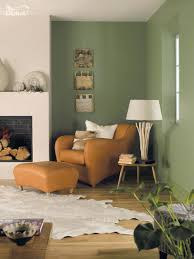 best light olive paint color brown colors alternatux com