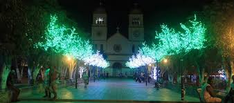 tree light project in colombia glamor